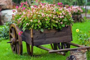 Garden Design On A Budget3