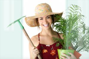 Garden Landscaping Maintenance